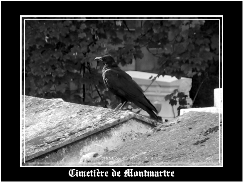Montmatre_06.JPG