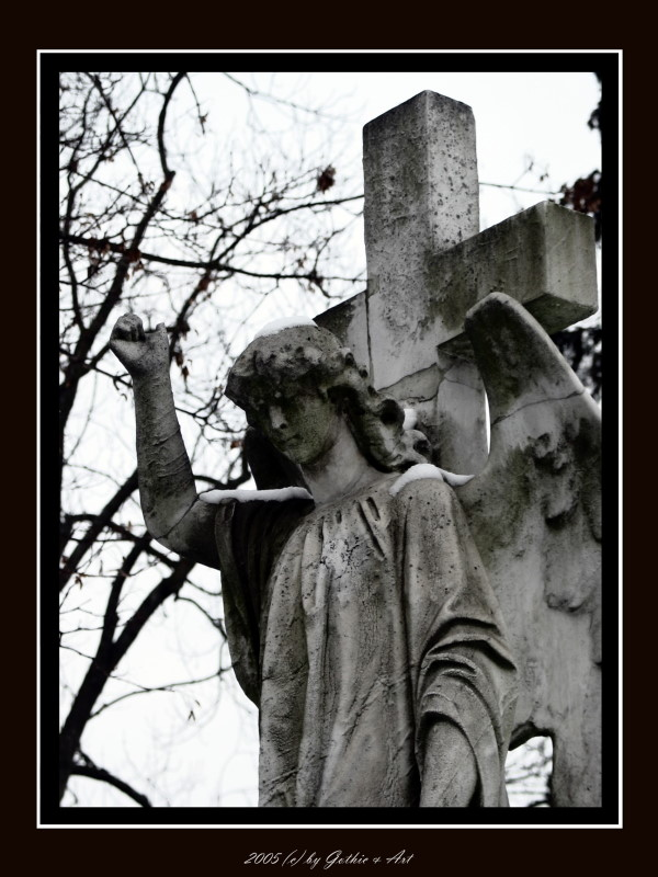 2005_01_26_Pragfriedhof_05.JPG