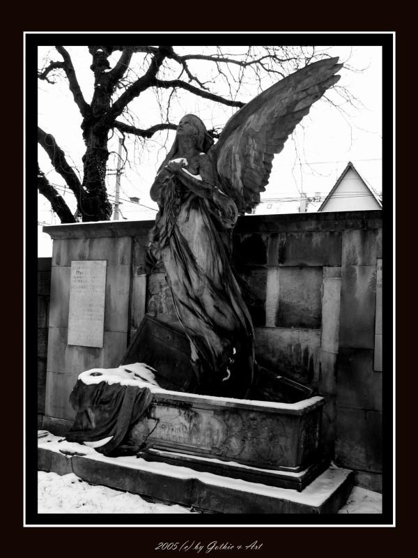 2005_01_26_Pragfriedhof_08.JPG