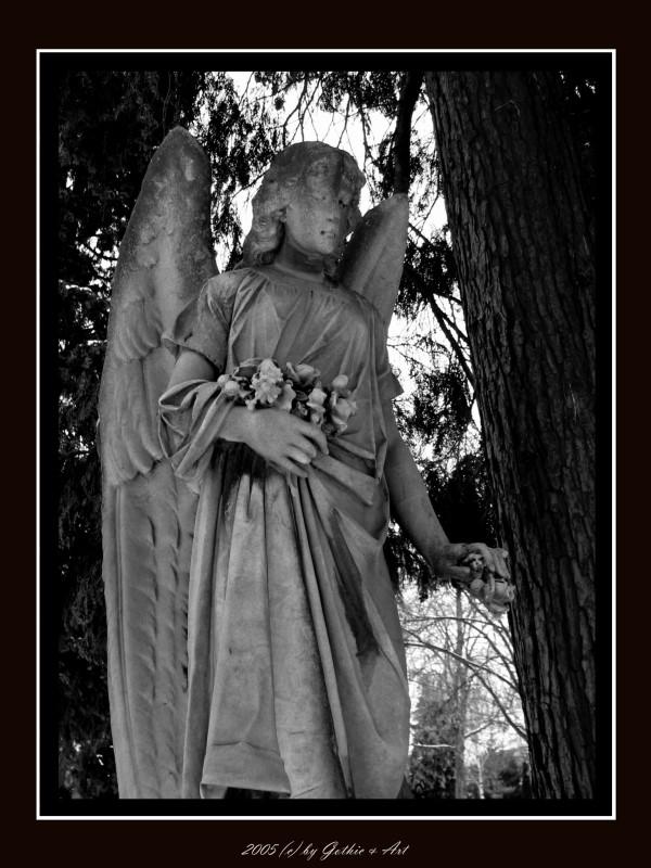 2005_01_26_Pragfriedhof_11.JPG