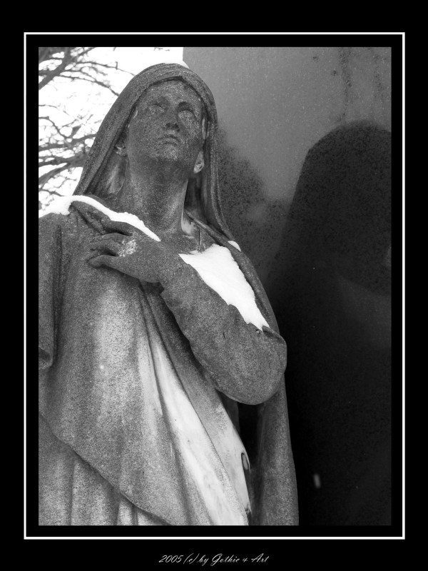 2005_01_26_Pragfriedhof_14.JPG