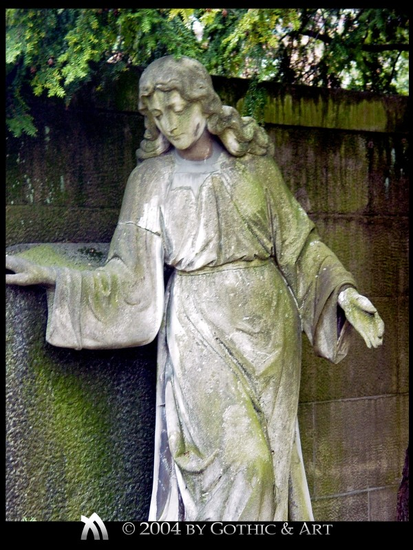 2005_01_26_Pragfriedhof_21.jpg