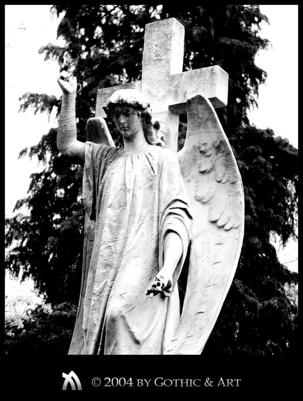 2005_01_26_Pragfriedhof_25.jpg