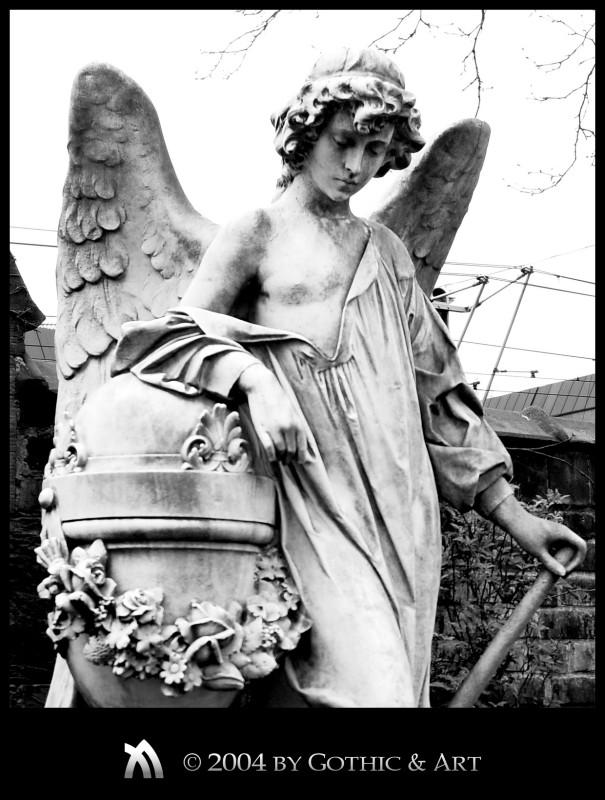 2005_01_26_Pragfriedhof_28.jpg