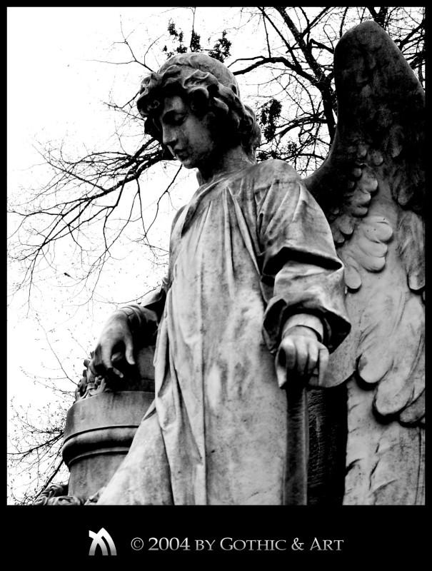 2005_01_26_Pragfriedhof_29.jpg