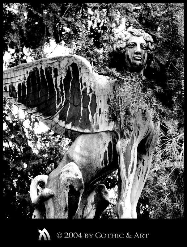 2005_01_26_Pragfriedhof_31.jpg