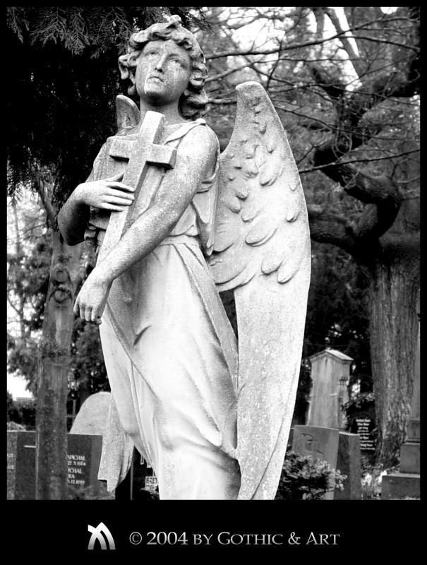 2005_01_26_Pragfriedhof_33.jpg