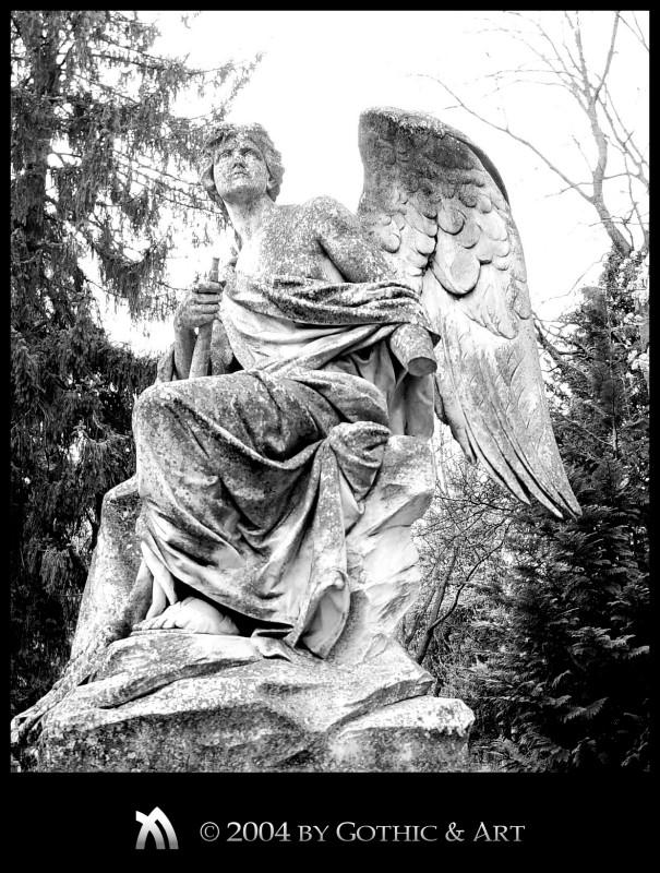 2005_01_26_Pragfriedhof_36.jpg