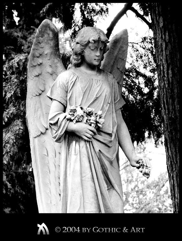 2005_01_26_Pragfriedhof_37.jpg