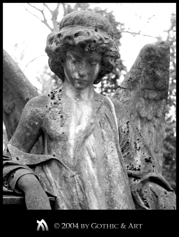 2005_01_26_Pragfriedhof_38.jpg