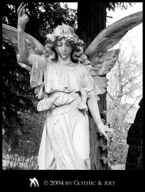 2005_01_26_Pragfriedhof_39.jpg