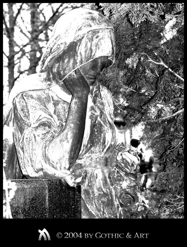 2005_01_26_Pragfriedhof_40.jpg
