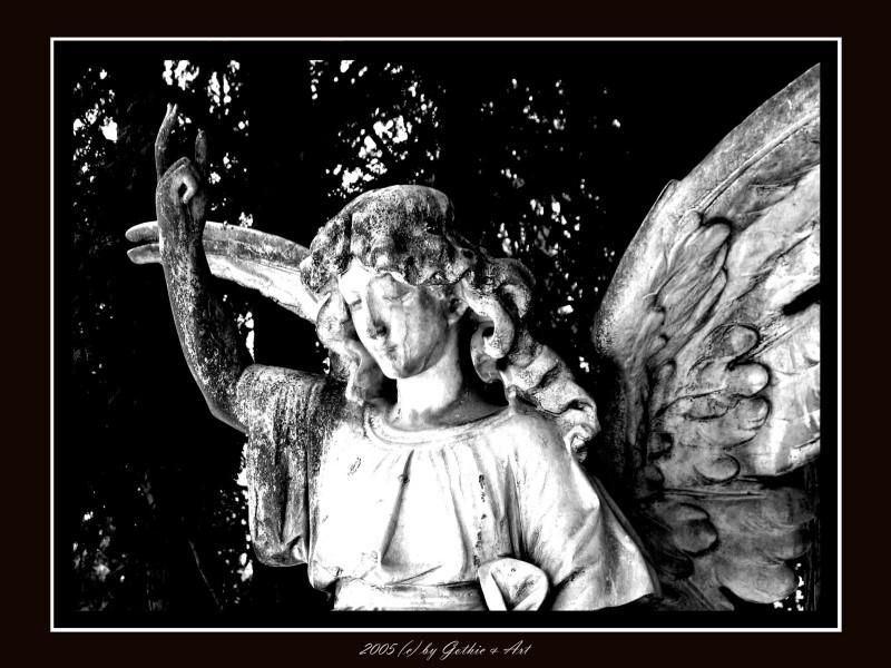 2005_01_26_Pragfriedhof_45.JPG