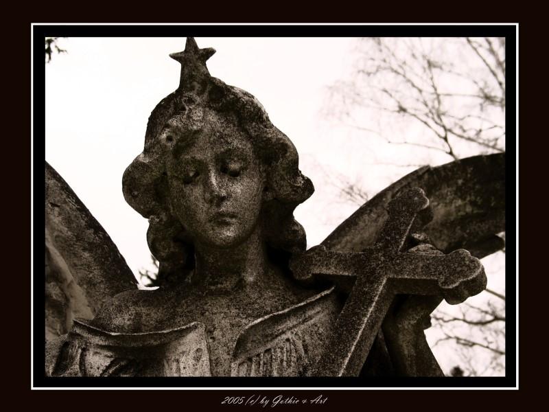 2005_01_26_Pragfriedhof_46.JPG
