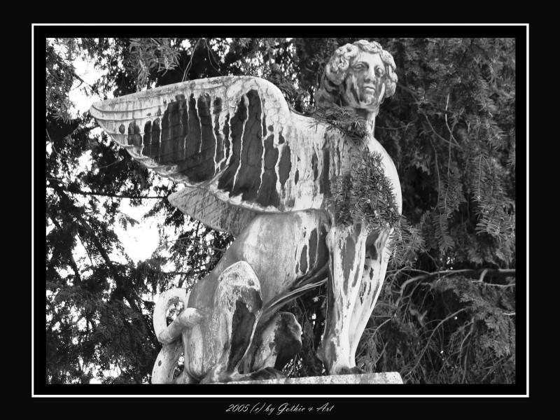 2005_01_26_Pragfriedhof_47.JPG