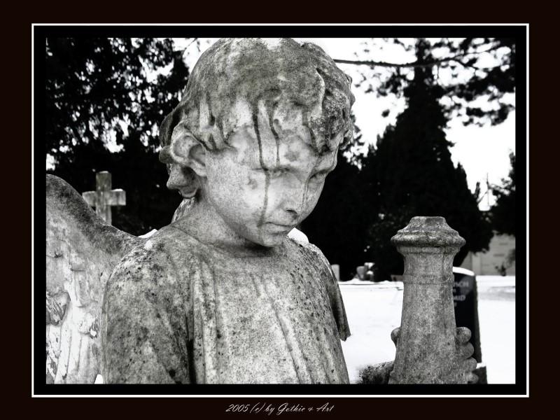 2005_01_26_Pragfriedhof_49.JPG