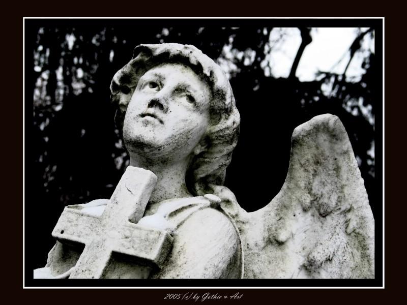 2005_01_26_Pragfriedhof_52.JPG