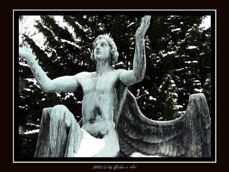 2005_01_26_Pragfriedhof_53.JPG