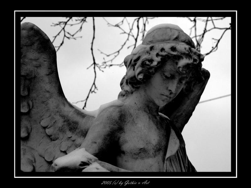 2005_01_26_Pragfriedhof_57.jpg