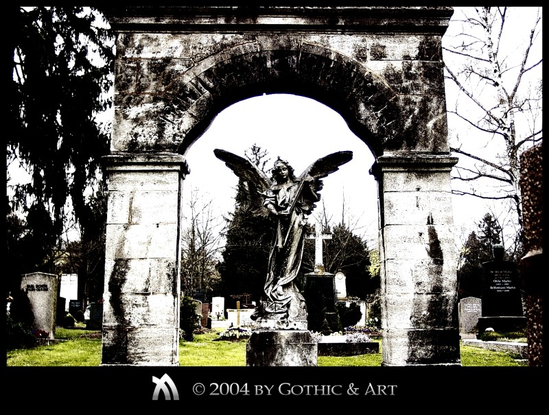 2005_01_26_Pragfriedhof_59.jpg