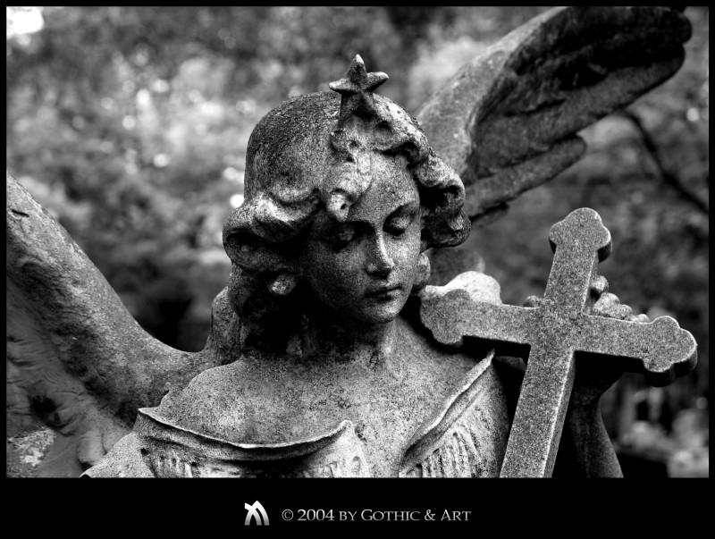 2005_01_26_Pragfriedhof_60.JPG