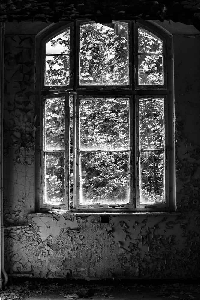 Beelitz_2009-06-15_027.jpg
